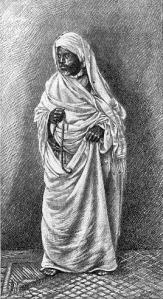 Ilustração de um marabu